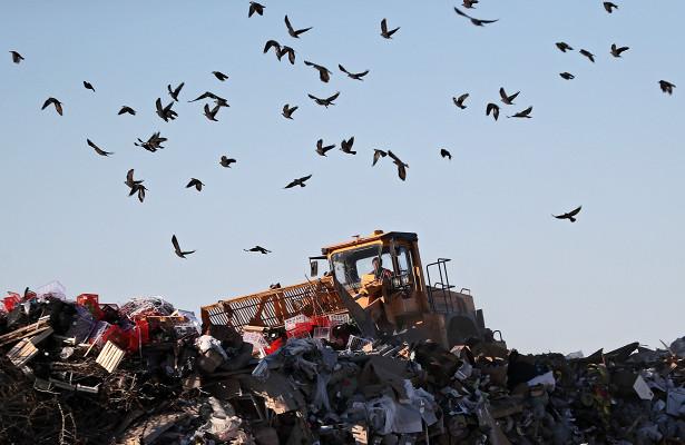 Рекультивацию мусорного полигона во Владикавказе начнут в 2021 году