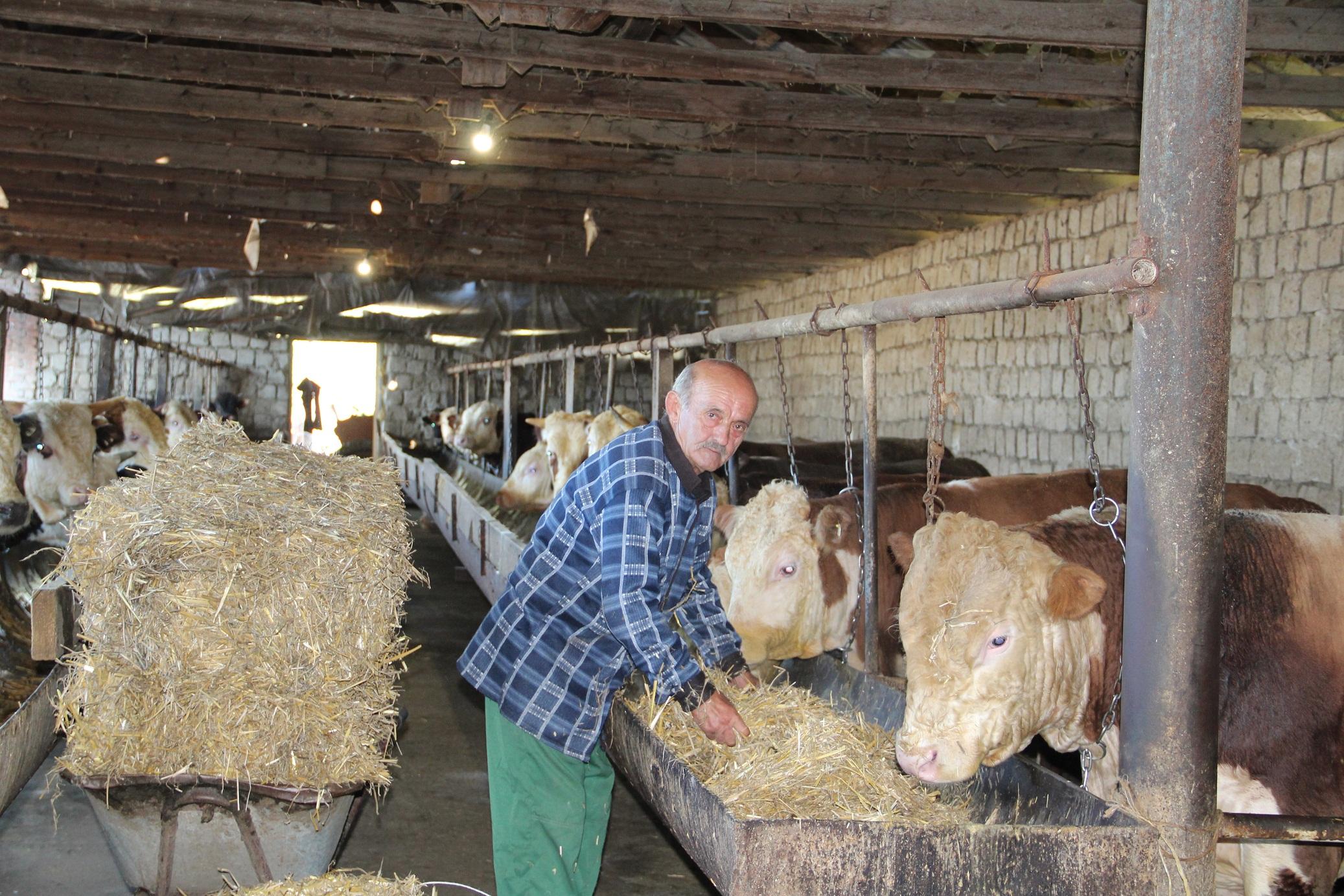 В Северной Осетии на гранты фермерам в 2020 году направят более 95 млн рублей