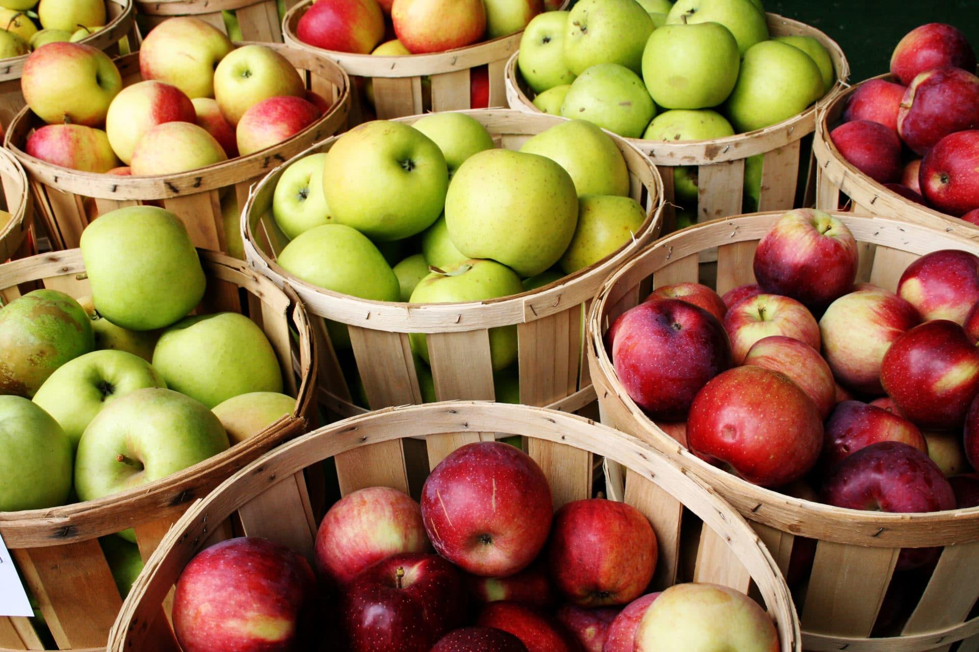 В Северной Осетии в 2020 году собрали 43,6 тысяч тонн плодов и ягод
