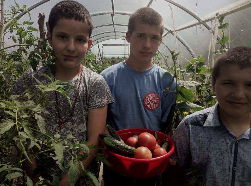 Воспитанники школы-интерната «Надежда» в селении Дур-Дур выращивают овощи в своей теплице
